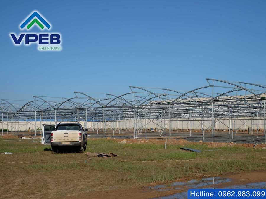 Giải pháp phơi nông sản trong nhà kính giúp tăng hiệu quả