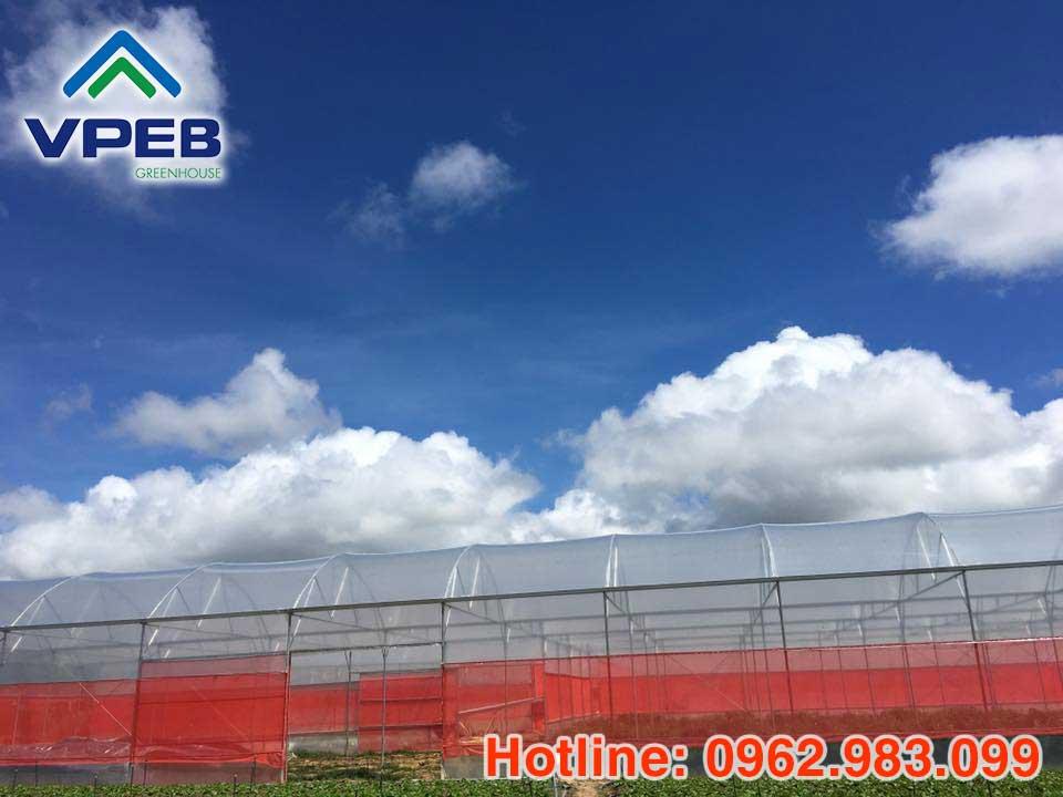 Lưới cắt nắng được cung cấp bới VPEBGREENHOUSE được sử dụng trong nhà kính