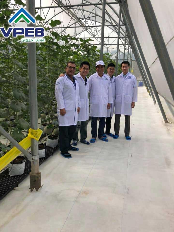 Các chuyên gia nông nghiệp đã thăm VPEB GREENFARM