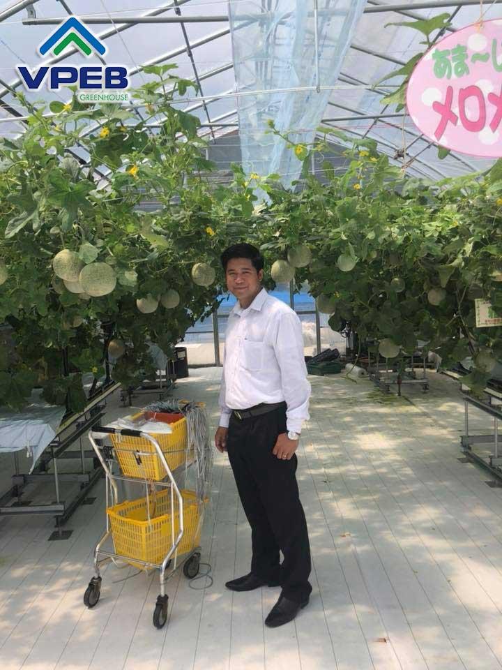 Đại diện VPEB đã qua thăm mô hình dưa lưới tại Nhật Bản