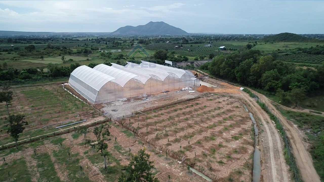 VPEB thi công dự án 2000m2 nhà kính trồng dưa lưới cho Khách Hàng