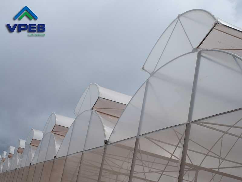 Nhà kính mái hở hai bên - VPEB GREENHOUSE