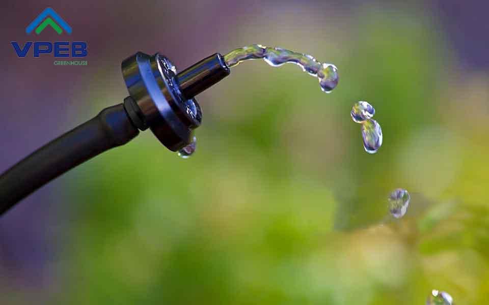 Hệ thống tưới nước nhỏ giọt