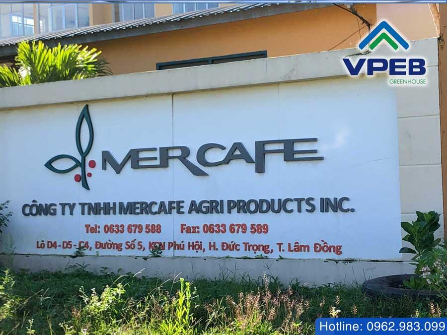 Công ty MERCAFE