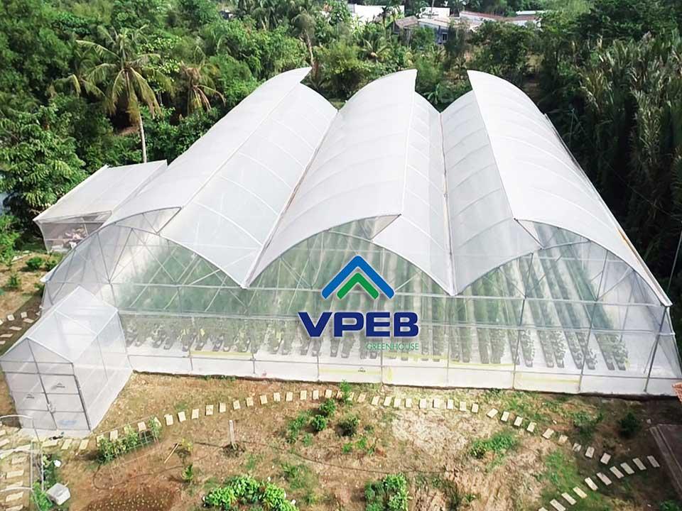 Farm dưa lưới VPEBGREENFARM đã hình thành và đưa vào sử dụng