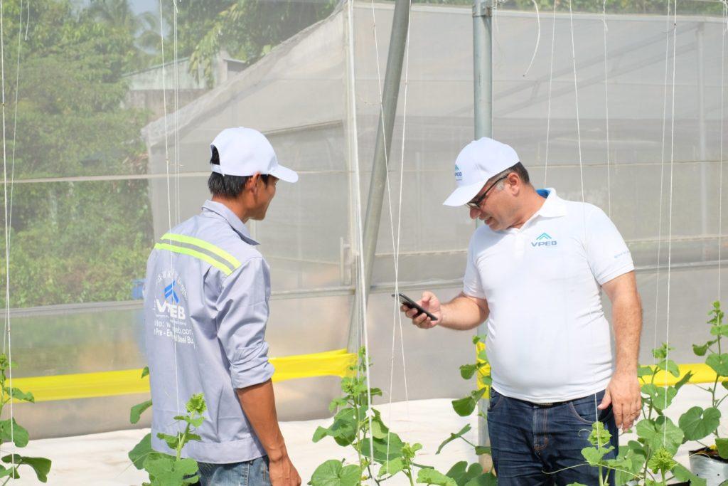 Giải pháp nông nghiệp toàn diện được thực hiện bởi VPEBGREENHOUSE