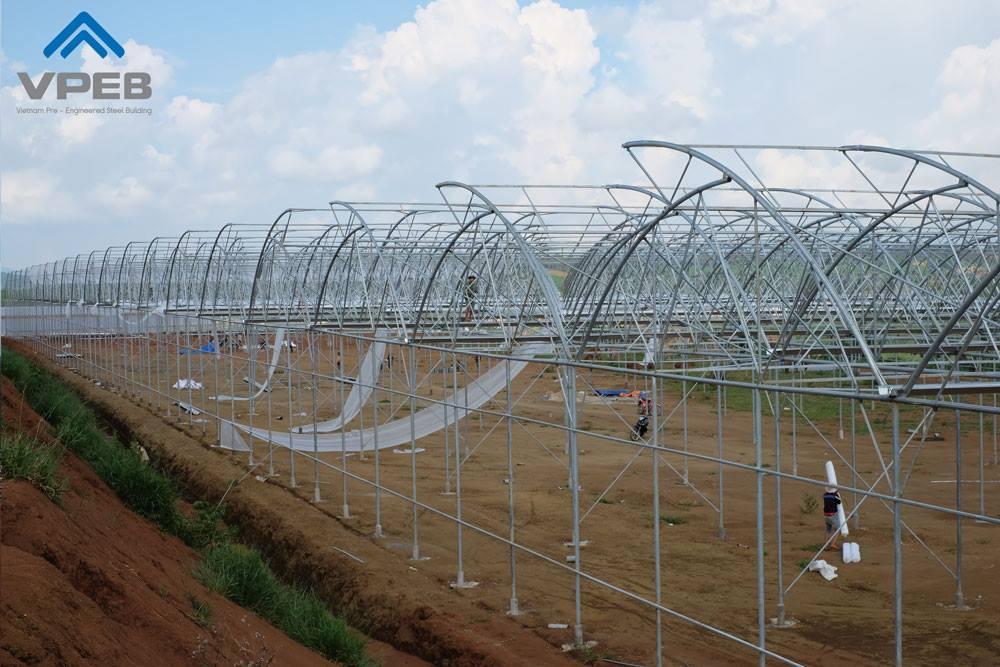 Công trình nhà kính/ Nhà màng trồng rau tại Lâm Đồng được thực hiện bởi VPEB