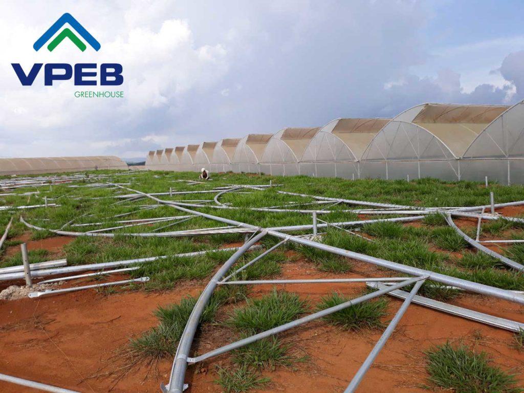 Công trình nhà kính trồng rau tại Lâm Đồng được thực hiện bởi VPEB